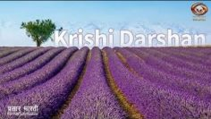 Krishi Darshan: Special programme on the use of Advanced Technology in Agriculture sector|11.05.2020